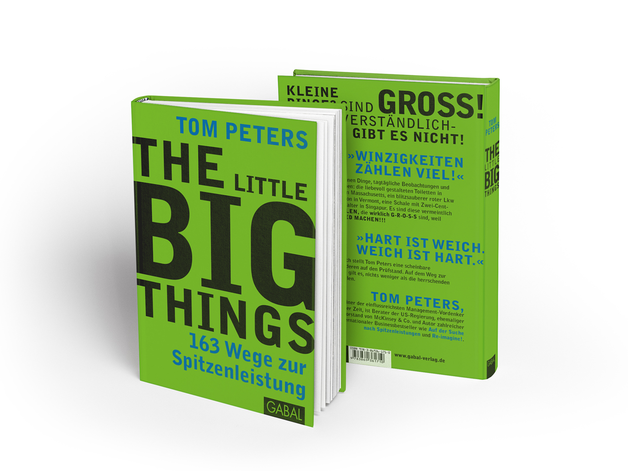 martin_zech_design_buchcovergestaltung_gabal_verlag_tom_peters_little_big_things