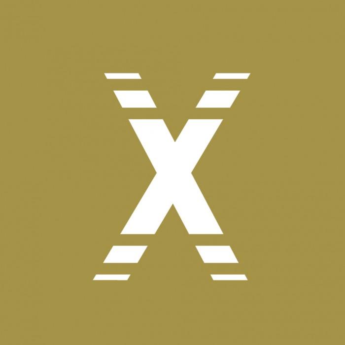 martin_zech_design_projekt_design_flexship_bildmarke
