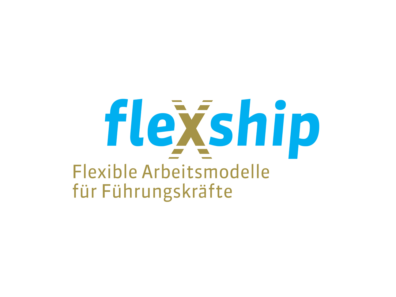 martin_zech_design_projekt_design_flexship_logo