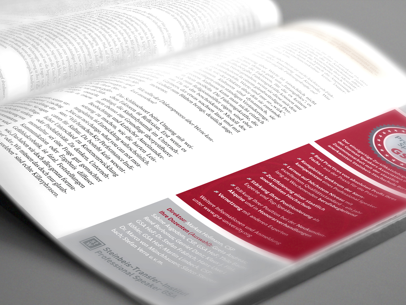 martin_zech_design_projekt_design_german_speakers_association_lehrgang_anzeige