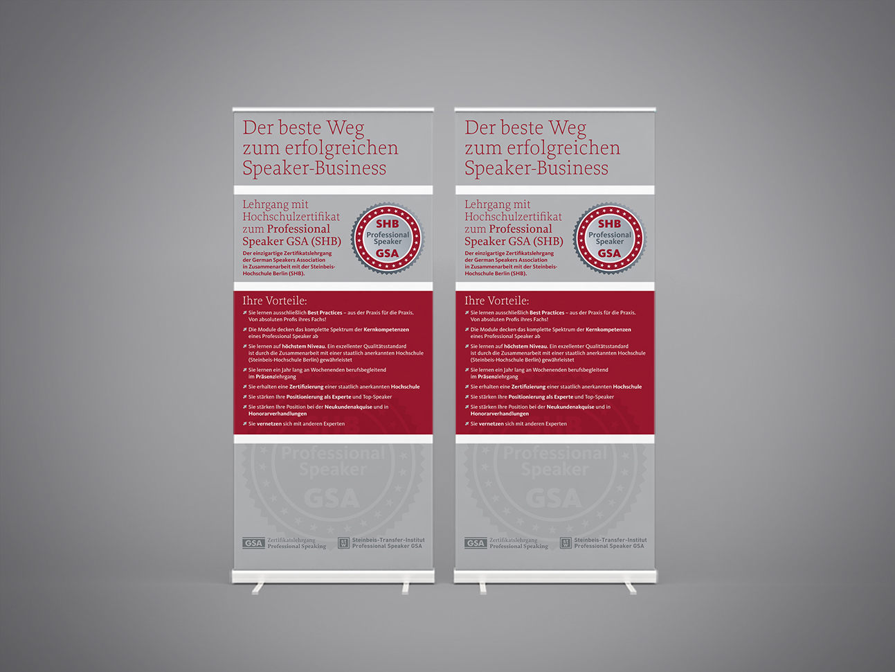 martin_zech_design_projekt_design_german_speakers_association_lehrgang_rollup
