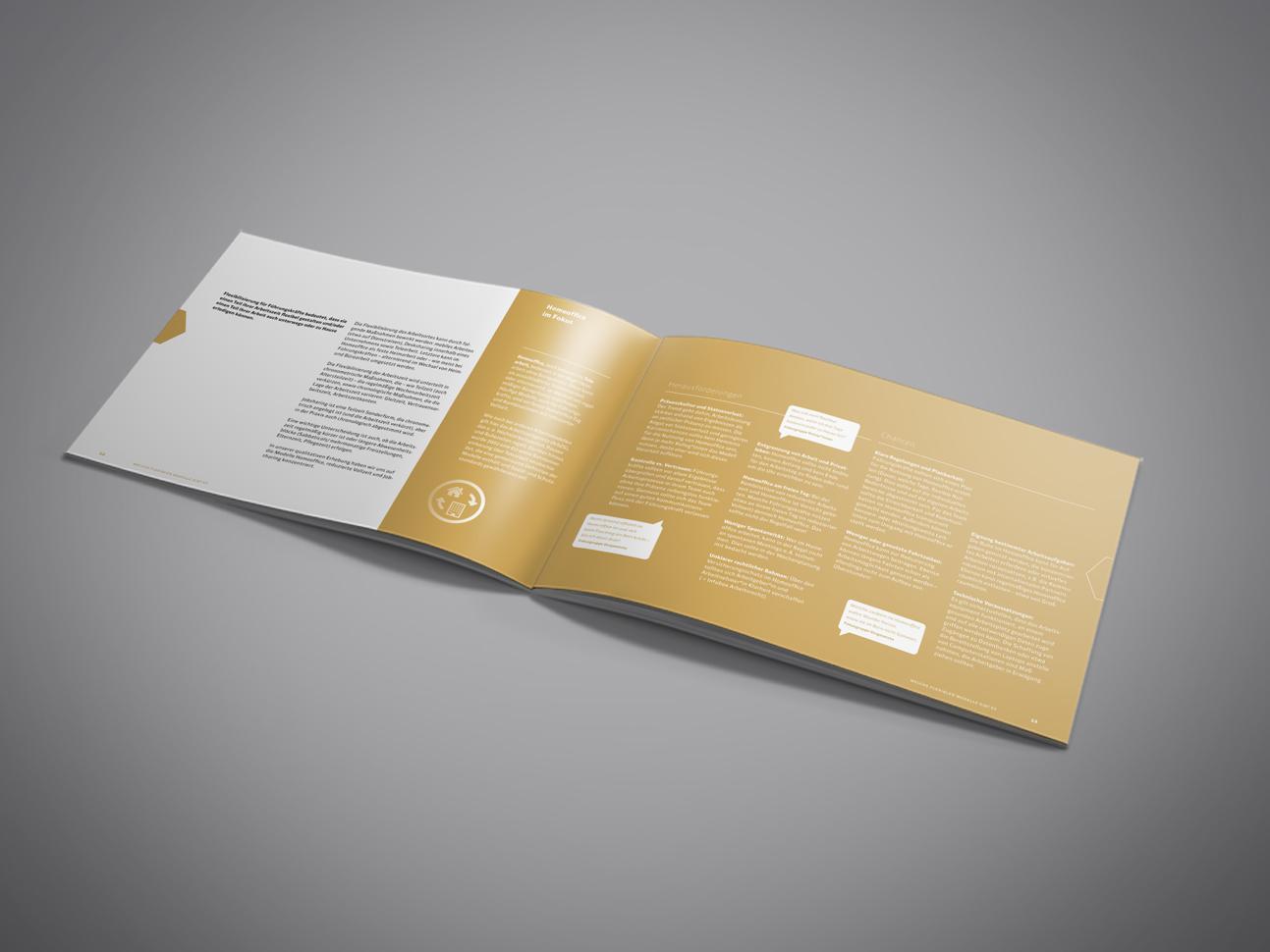 martin_zech_design_projekt_design_flexship_praxisleitfaden_doppelseite