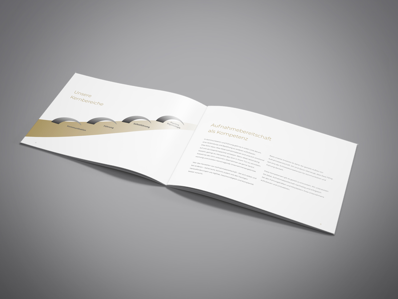 martin zech design, corporate design, pontea, firmenbroschuere, doppelseite 2